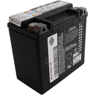 Harley-Davidson® AGM Original Battery 66000208