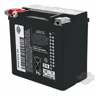 Harley-Davidson® AGM Original Battery 66000206